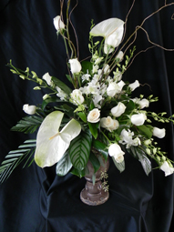 White Elegance in St Catharines ON, Vine Floral
