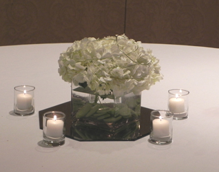 Cube Vase With Hydrangea in St Catharines ON, Vine Floral