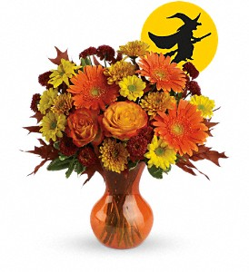 Hocus Pocus by Teleflora in Brandon FL, Bloomingdale Florist