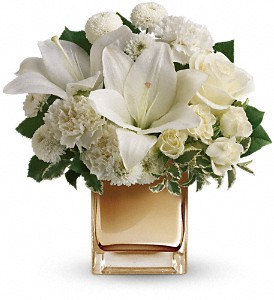 Starlit Kisses by Teleflora in Rochester NY, Fabulous Flowers and Gifts