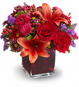 Teleflora's Autumn Grace in Dublin OH, Red Blossom Flowers & Gifts