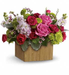 Teleflora's Garden Delights in Edmonton AB, Petals For Less Ltd.