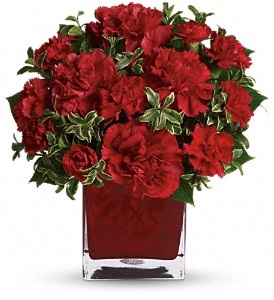 Teleflora's Precious Love in Evergreen CO, The Holly Berry