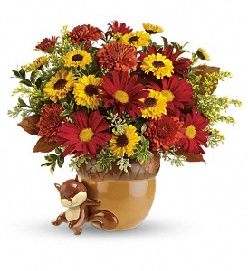 Teleflora's Send a Hug Squirrel Away Bouquet in Grass Lake MI, Designs By Judy