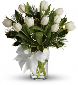 Tulips and Pine in Vinton VA, Creative Occasions Florals & Fine Gifts