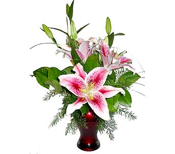 VF29 ''Luscious Lilies'' in Oklahoma City OK, Array of Flowers & Gifts