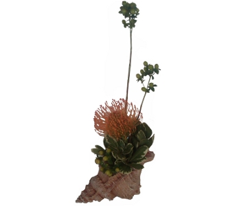 Seaside Protea Centerpiece in Raleigh NC, North Raleigh Florist