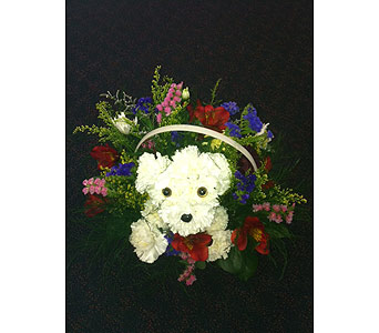 Puppy Arrangement in West Vancouver BC, Flowers By Nan