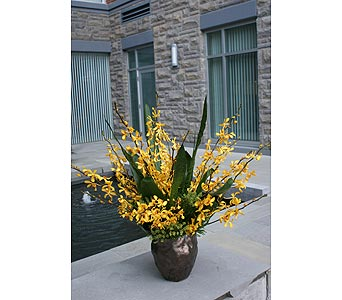 Golden Aranda in Victoria BC, Fine Floral Designs