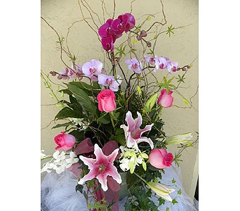 Planter with Lillies & Orchids in Sunnyvale CA, Flowers By Sophia