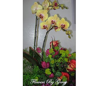 Orchid Tango in Brentwood CA, Flowers By Gerry