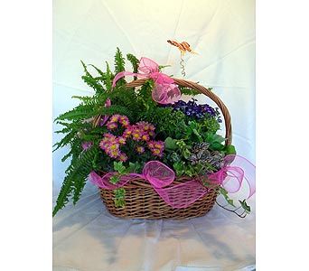 Blooming and Green Plant Garden in Crafton PA, Sisters Floral Designs