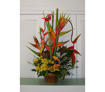 Exotic Basket Arrangement in Houston TX, Athas Florist