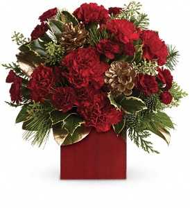 Laughter and Cheer by Teleflora in Skowhegan ME, Boynton's Greenhouses, Inc.
