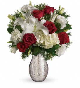 A Christmas Kiss by Teleflora in Royersford PA, Three Peas In A Pod Florist