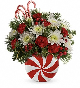 Teleflora's Candy-Striped Christmas Bouquet in Oklahoma City OK, Array of Flowers & Gifts