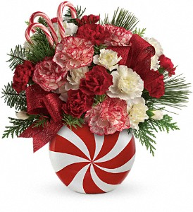Teleflora's Peppermint Christmas Bouquet in Oklahoma City OK, Array of Flowers & Gifts