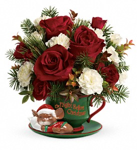Teleflora's Send a Hug Waiting For Santa in Mobile AL, Cleveland the Florist