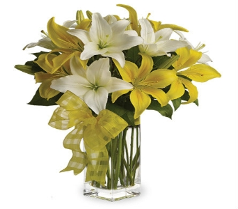 Springtime Lilies by Hoogasian Flowers in San Francisco CA, Hoogasian Flowers