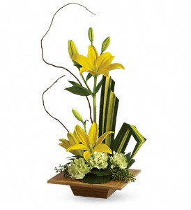 Teleflora's Bamboo Artistry in Waterbury CT, The Orchid Florist