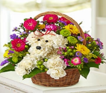 dog-able in basket  in Yelm WA, Yelm Floral