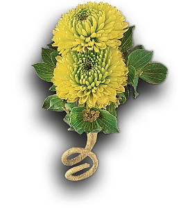 Chartreuse Chrysanthemum Boutonniere in Bend OR, All Occasion Flowers & Gifts