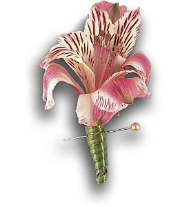 Pink Alstroemeria Boutonniere in Bend OR, All Occasion Flowers & Gifts