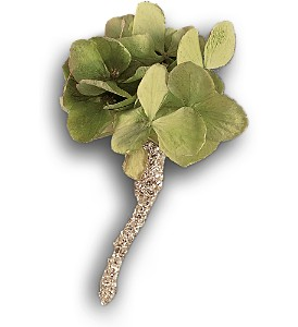 Green Hydrangea Boutonniere in Bend OR, All Occasion Flowers & Gifts