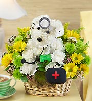 Doogie Howser M.D. in Chambersburg PA, All Occasion Florist