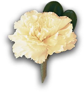White Carnation Boutonniere in Norwalk CT, Bruce's Flowers & Greenhouses