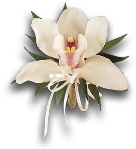 Cymbidium Orchid Corsage in Orlando FL, Harry's Famous Flowers