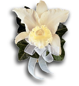 Japhet Orchid Corsage in Bend OR, All Occasion Flowers & Gifts