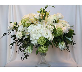 Just White 9 in Victoria BC, Fine Floral Designs