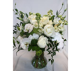 Just White 12 in Victoria BC, Fine Floral Designs