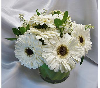 Just White 17 in Victoria BC, Fine Floral Designs