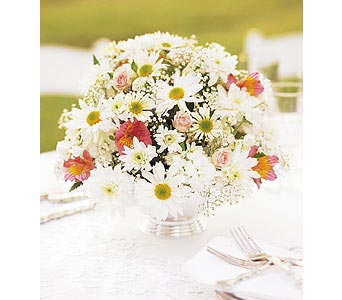 Daisy Joy Centerpiece in Big Rapids MI, Patterson's Flowers, Inc.