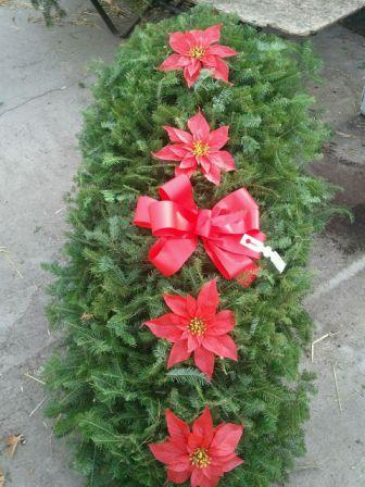 Basic Red Pointsettia Blanket in Westland MI, Westland Florist & Greenhouse