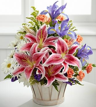 Wondrous Nature in Jacksonville FL, Jacksonville Florist Inc