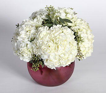 White Hydrangeas in Southampton PA, Domenic Graziano Flowers