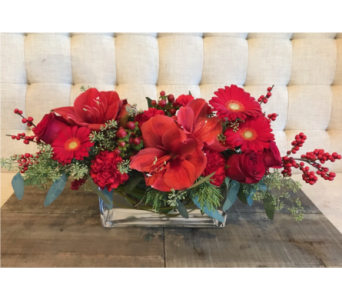 Contemporary Holiday Centerpiece in Charleston SC, Tiger Lily Florist Inc.