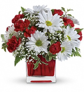 Red And White Delight by Teleflora in Menomonee Falls WI, Bank of Flowers