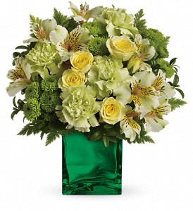 Teleflora's Emerald Elegance Bouquet in Oakland MD, Green Acres Flower Basket