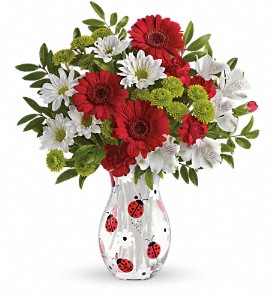 Teleflora's Lovely Ladybug Bouquet in Jamesburg NJ, Sweet William & Thyme