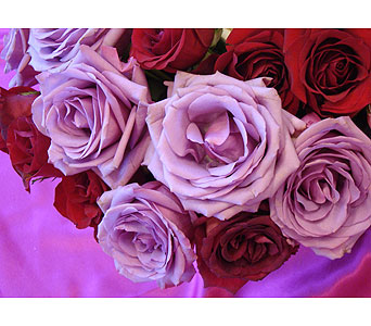 CUT ROSE BOUQUET in Victoria BC, Fine Floral Designs