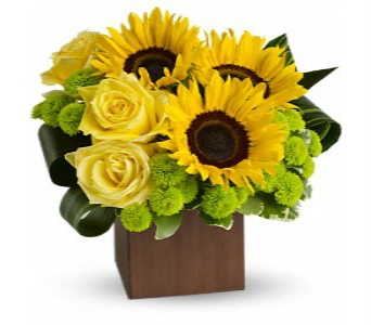 Westerville Sunshine Bouquet in Columbus OH, OSUFLOWERS .COM