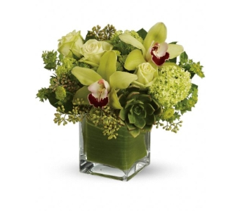 Rainforest Bouquet $49.99-$79.99 in Bradenton FL, Ms. Scarlett's Flowers & Gifts