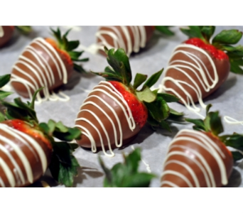 Decadent Chocolate Strawberries in Bradenton FL, Ms. Scarlett's Flowers & Gifts