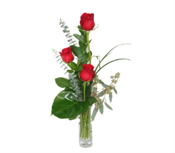 Red Rose Trio in Grimsby ON, Cole's Florist Inc.
