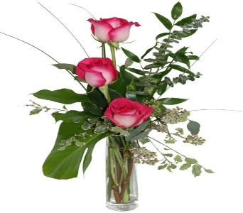 Pink Rose Trio in Grimsby ON, Cole's Florist Inc.