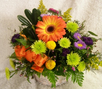 Custom Arrangement in Twin Falls ID, Absolutely Flowers